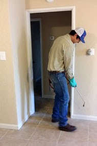 Interior pest control Treatment